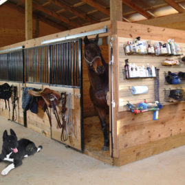 Tack Room organized on Slatwall Panels