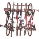 Large Monkey Bars Bike Rack